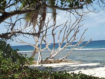 Alquiler catamaranes Seychelles