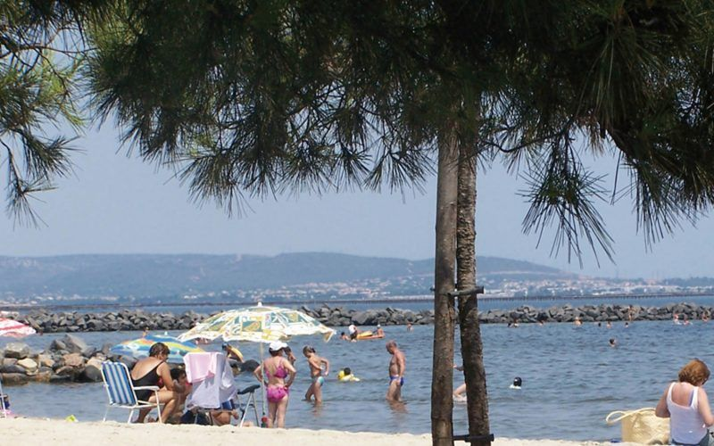 Alquiler-barcos-fluviales-turismo-fluvial-canales-francia-Camarga
