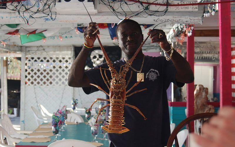 caribe-san-martin-langosta