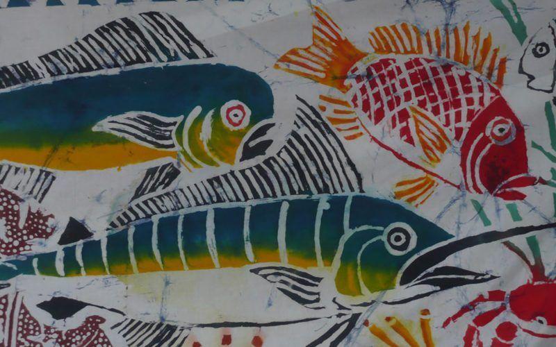 caribe-san-vicente-peces_8340906737_o