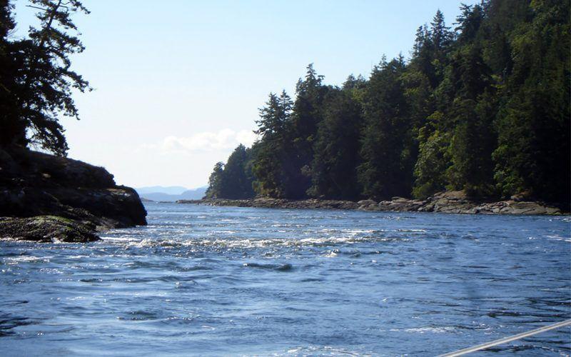 Alquiler-Barcos-Canada-Vancouver-velero-catamaran-vacaciones