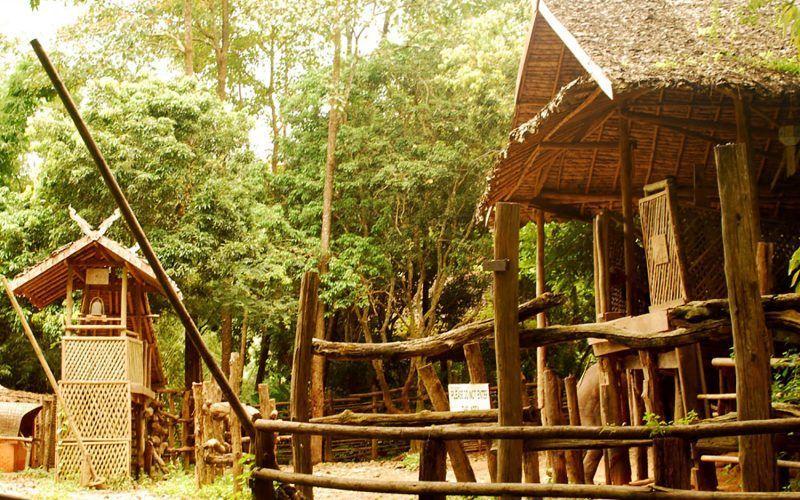tailandia-koh-samuy-cabaa_8292782754_o