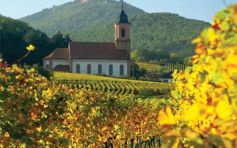 Alquiler-barcos-fluviales-turismo-fluvial-canales-Alsacia-Lorena