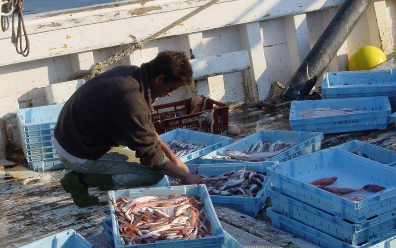 barcelona-pescador_8417754824_o
