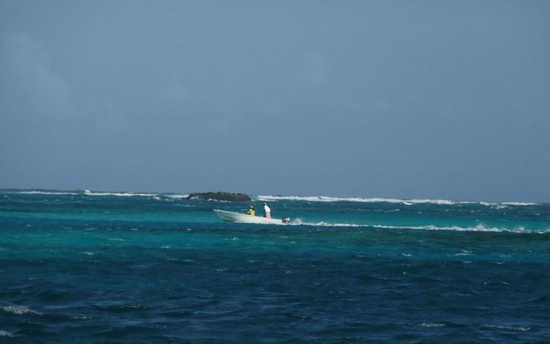 caribe-guadalupe-zodic_8341791806_o