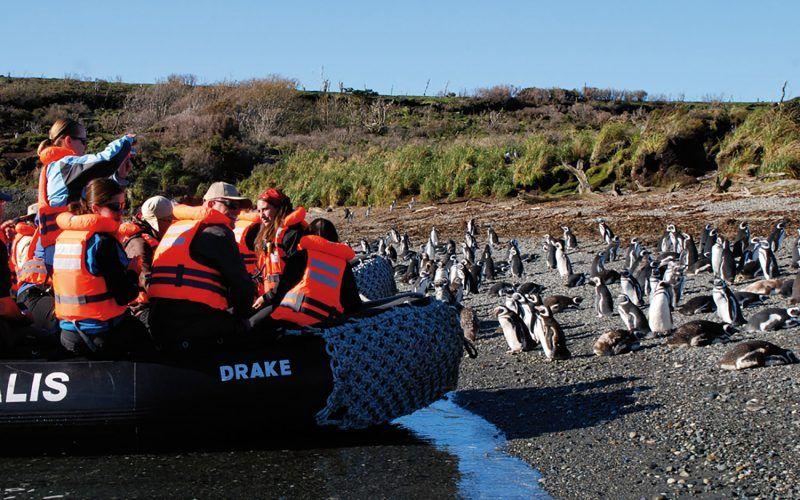 desembarco-pinguinera_8531069838_o