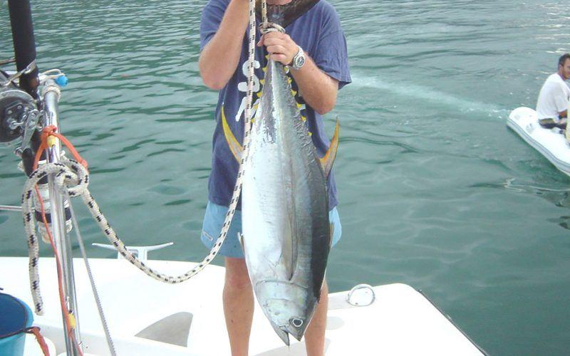 pesca_26128612716_o