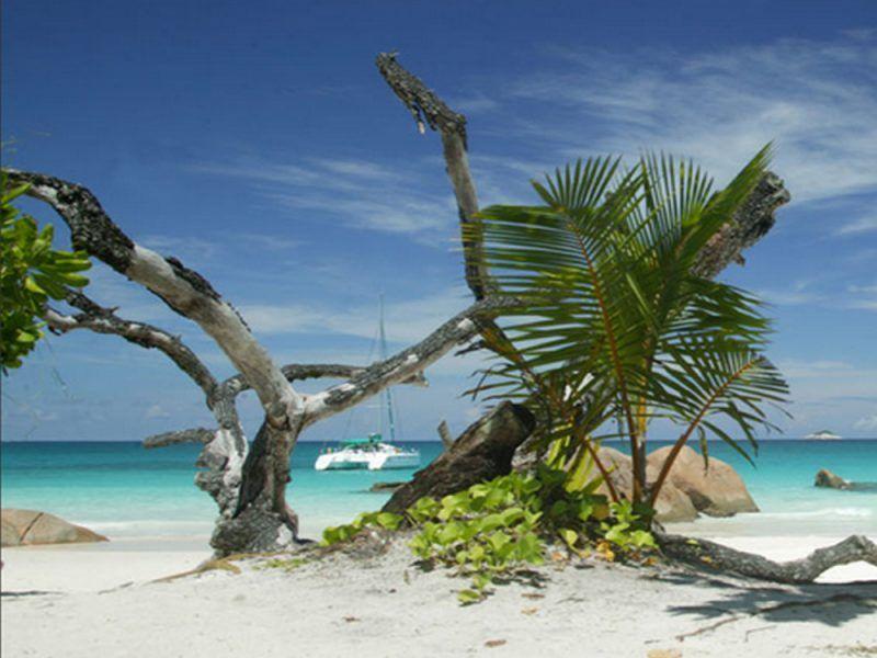 seychelles-playa_8485523461_o