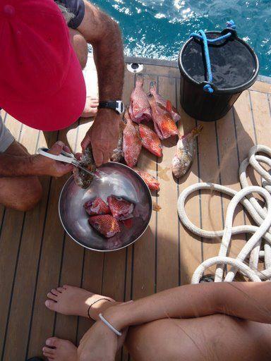 travesia-del-atlantico-en-catamaran_26791651204_o