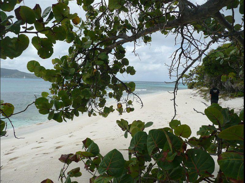 Alquiler-barco-Caribe-Martinica-yate-motor-velero-catamaran-turismo-vacaciones