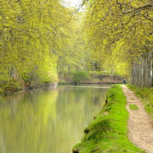 Turismo fluvial Canal du Midi