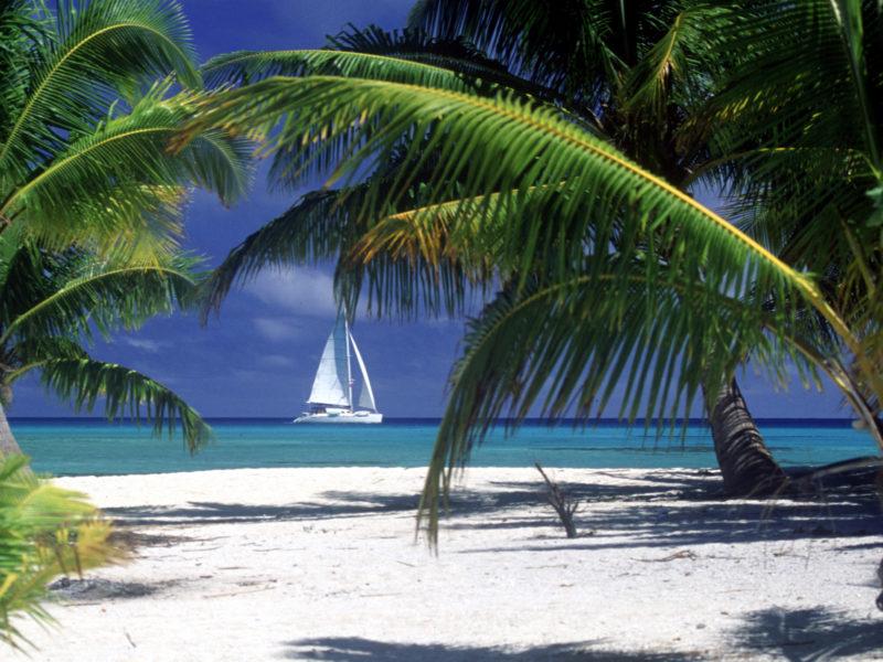 Playa y cata