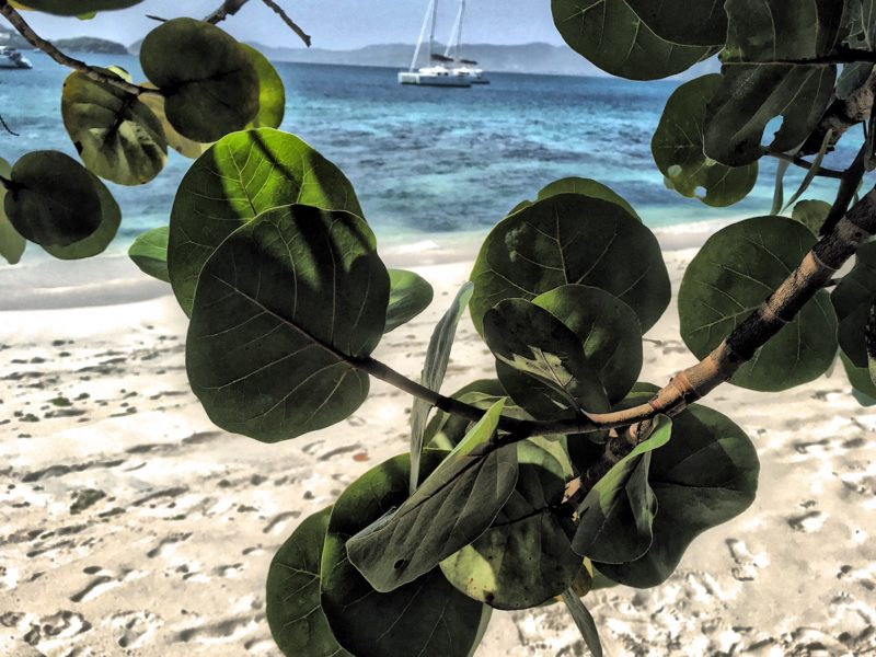vacaciones-alquiler-catamaran-caribe- viaje de novios