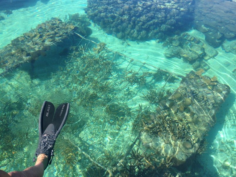 snorkel belize